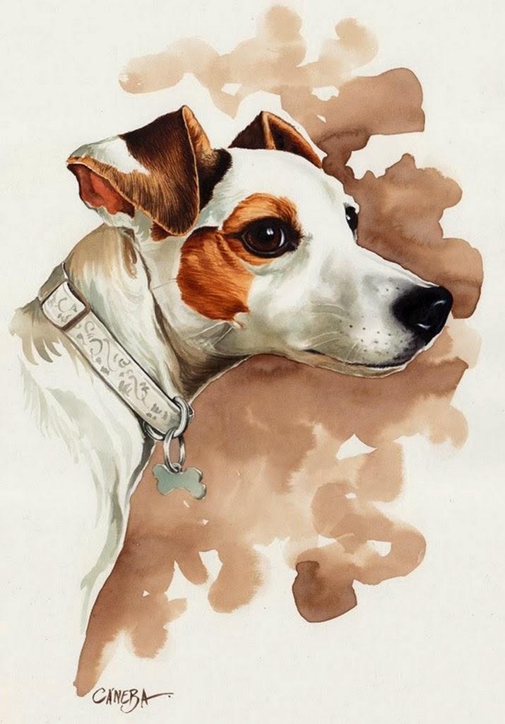 pinturas-caninas-retratos