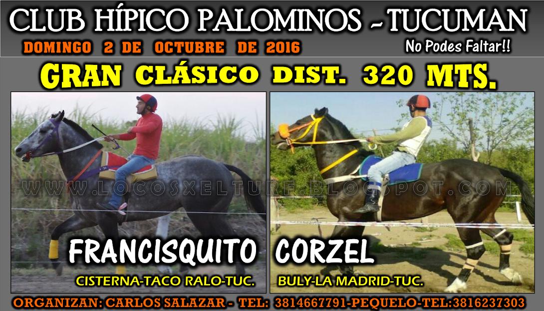 02-10-16-HIP. PALOMINOS-CLAS.2