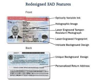 Redesigned Employment Authorization Document