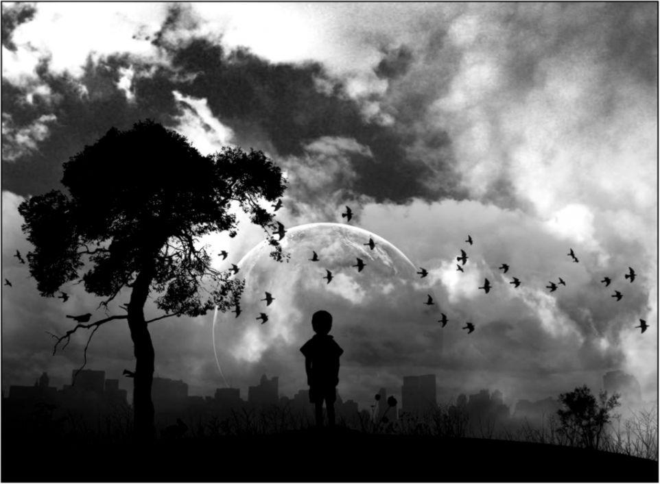 Black And White Nature Photo by maddiiee08  Photobucket