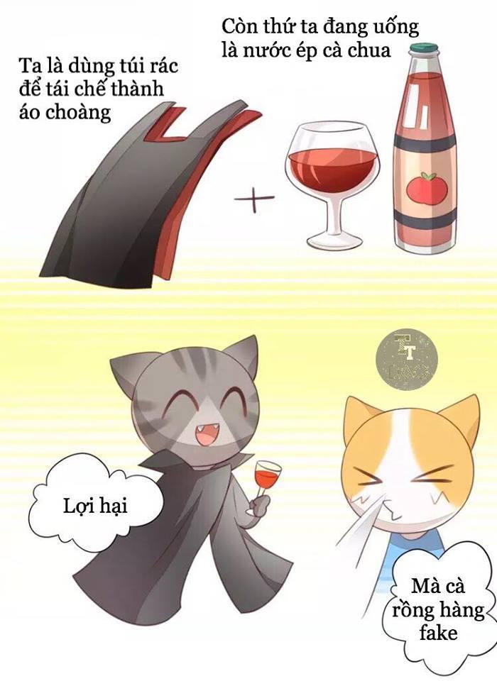 Dưới Móng Vuốt Mèo Chap 18 - Next Chap 19