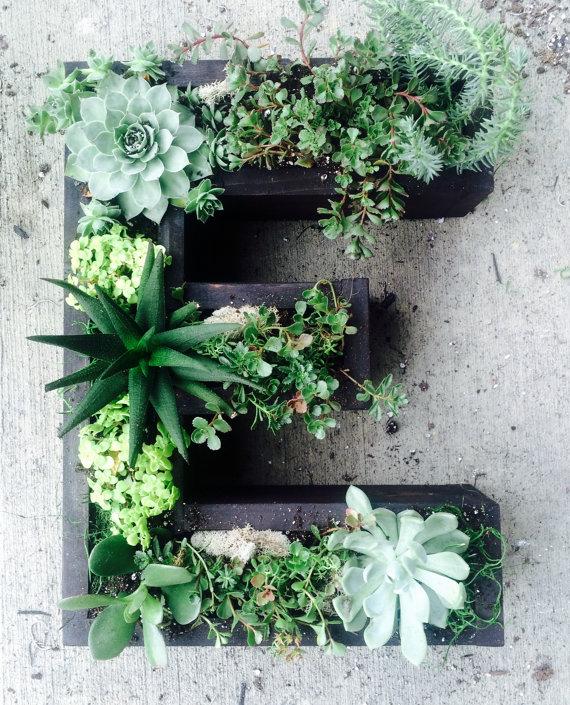 Jardines verticales con letras y suculentas jardines - Plantas para jardines verticales ...