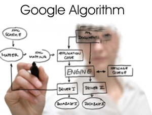 About Google  Algorithm or  Definition Of  Algorithm?