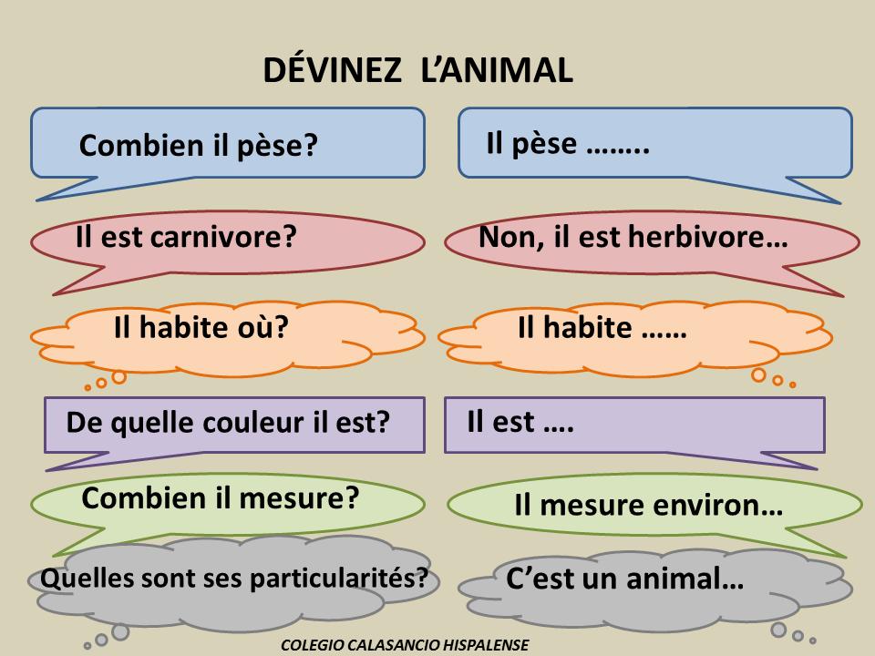 on apprend le fran u00e7ais   vocabulaire des animaux