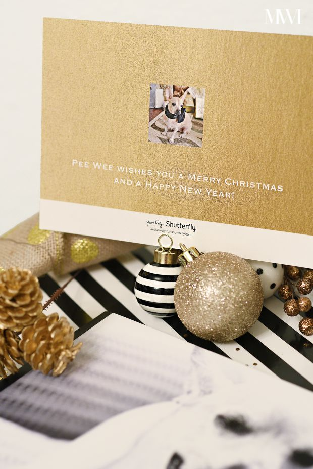 Shimmery gold & white holiday greeting cards from Shutterfly via monicawantsit.com