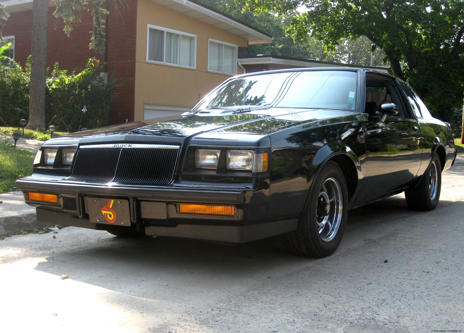 Buick Grand National Body