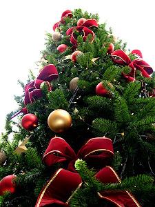 Hukum Memberikan atau Mengucapkan Selamat Natal Dalam Islam