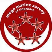Mega Marine Survey (CMBS)