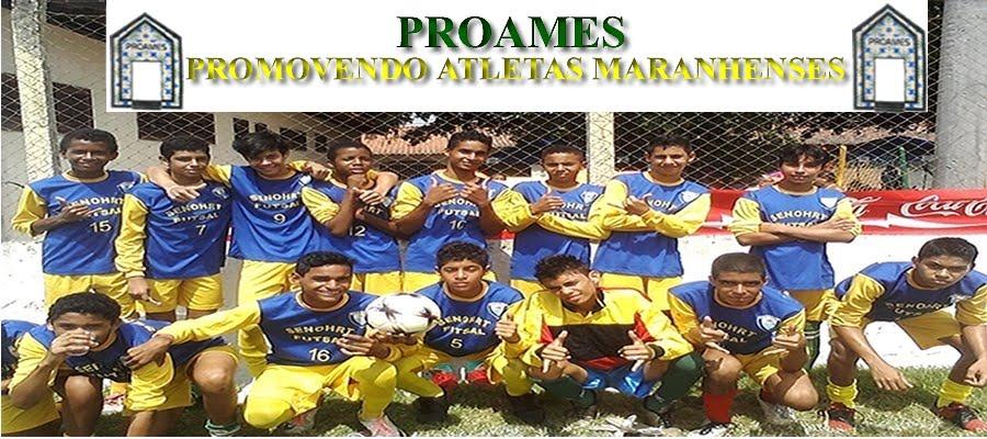 PROAMES