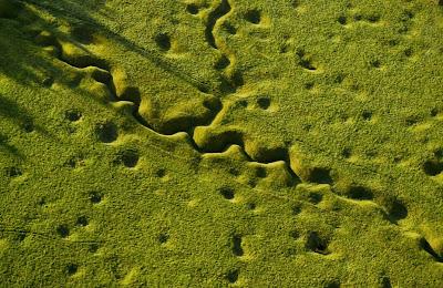 Η μάχη του ποταμού Somme, βόρεια Γαλλία (1 Ιουλίου - 18 Νοεμβρίου 1916)