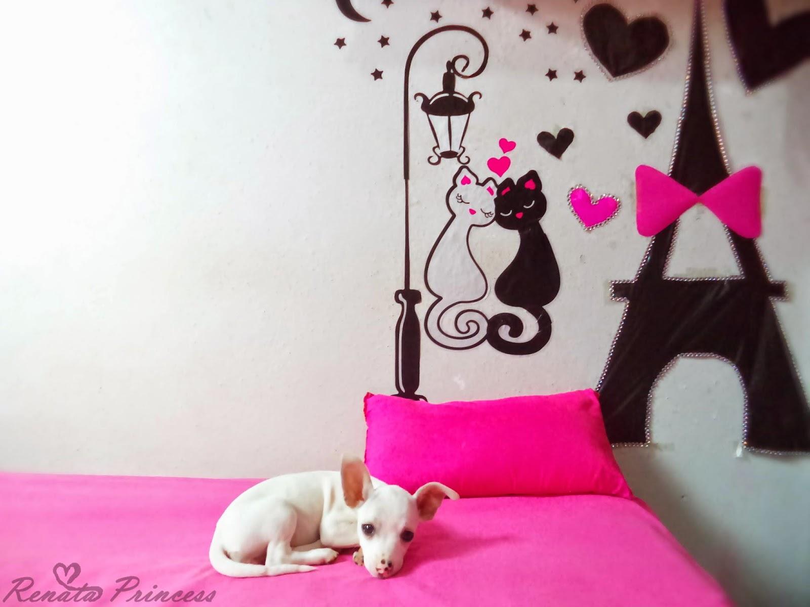 Muito Blog da Renata Princess : Nova decoração do meu quarto e Comprinhas ♥ AR18