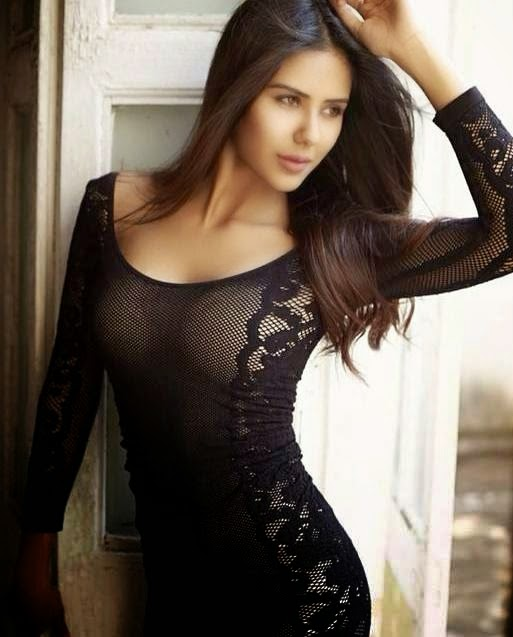 Sonam Bajwa Hot Photoshoot