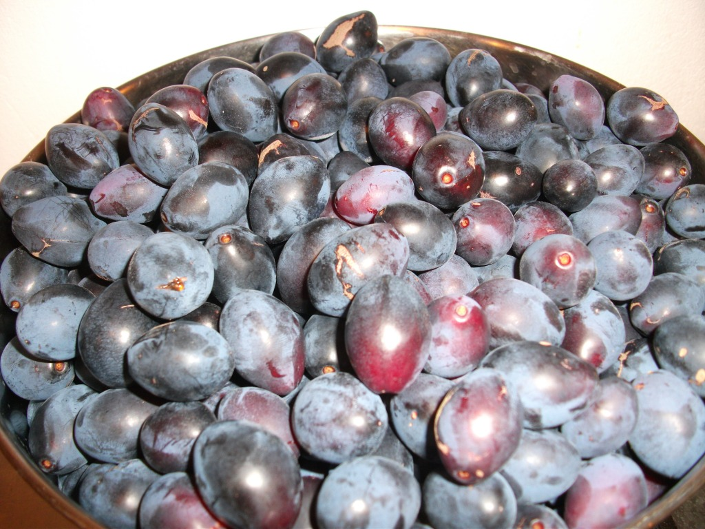 2015 08 decorating with plum and damson - The Fruit Produces A Jam Which Is Dense And Dark Its Sweetness Undercut By A Delicious Sophisticated Tartness The Downside Of Damsons Is Their Stones