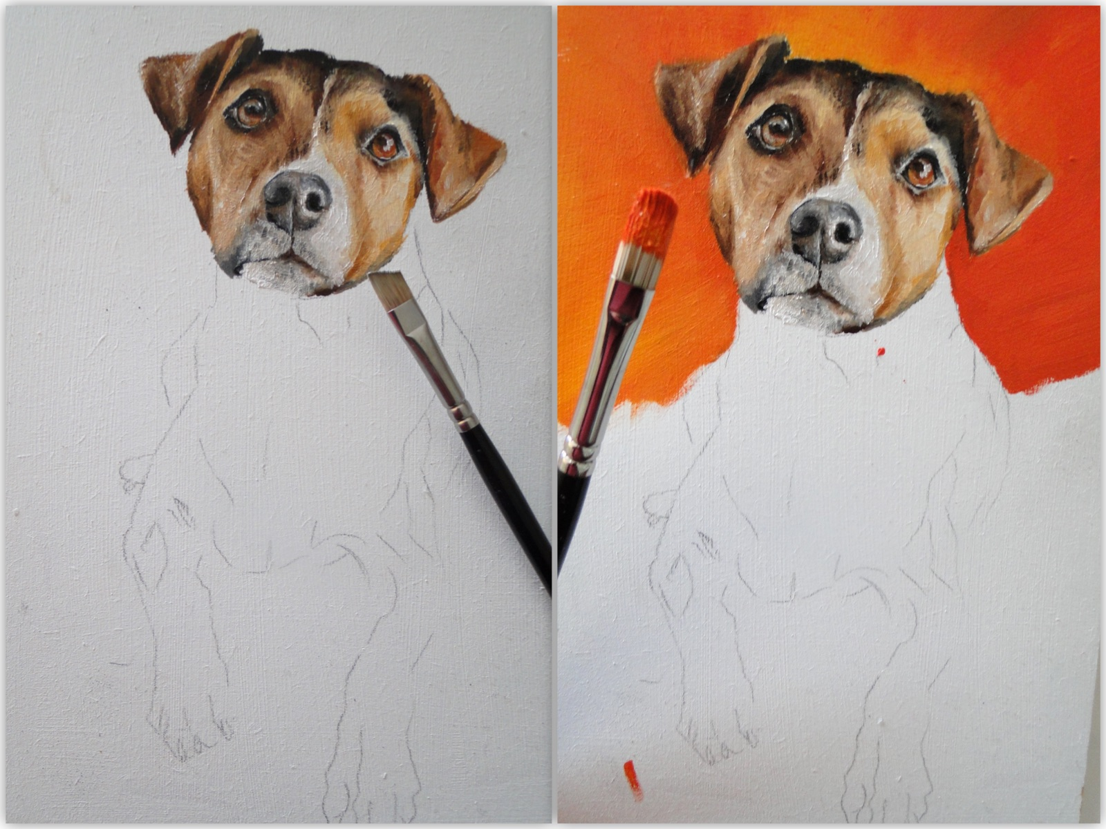 work in progress, jack russell oil painting, a pet portrait by karen, animal artist