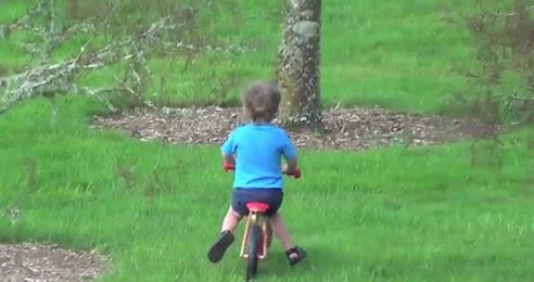 o-pai-do-ano-e-seu-filho-aprendendo-andar-de-bicicleta
