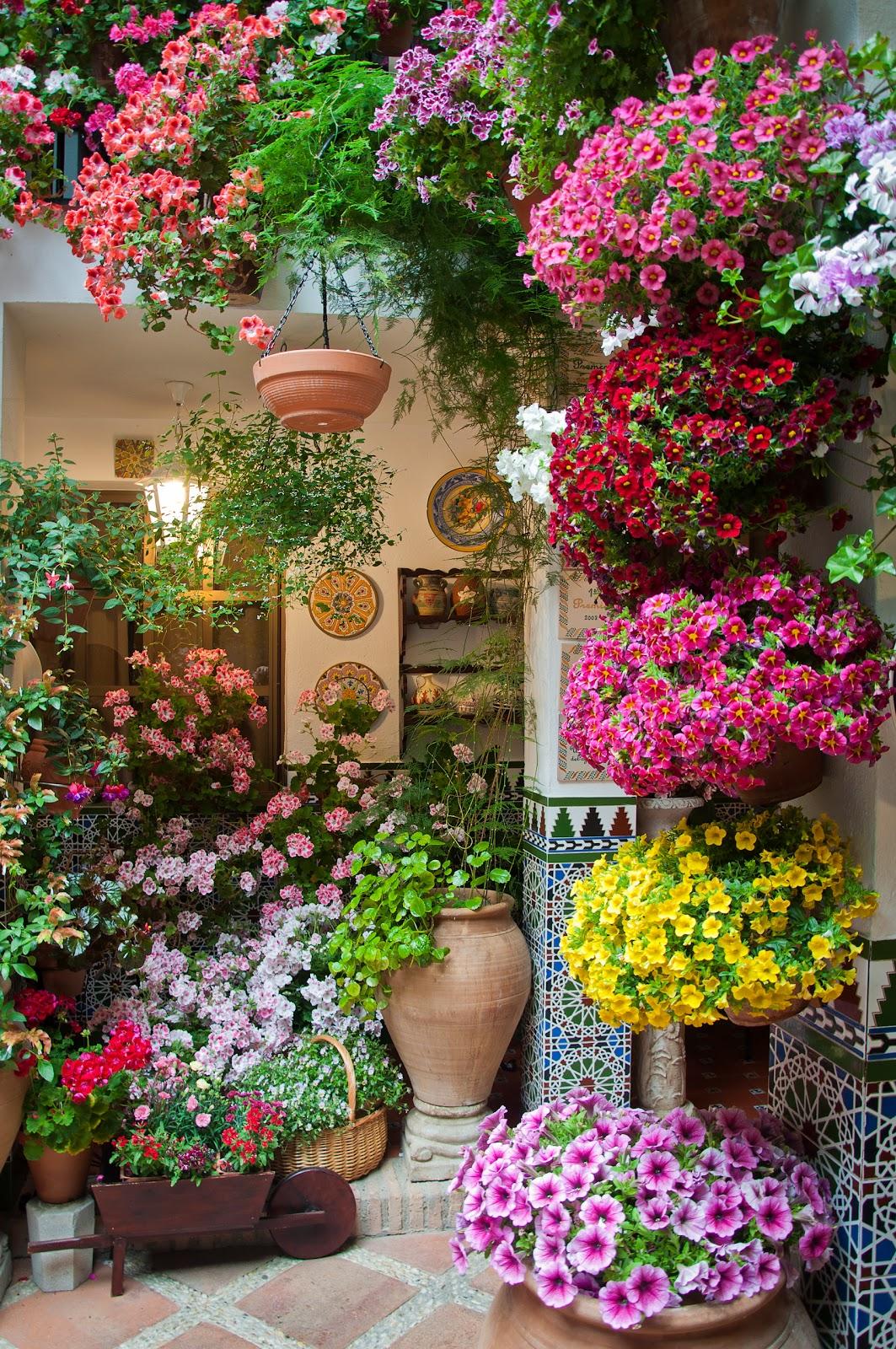 Candilazos patios cordobeses 2012 i for Colorful backyard decorating ideas