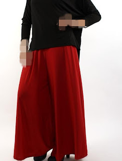 Long Palazzo Pants Red