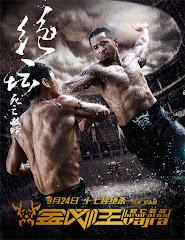 Jin Gang Wang  (2013)