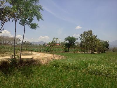 Dalan Kalen Katir Desa Sundul