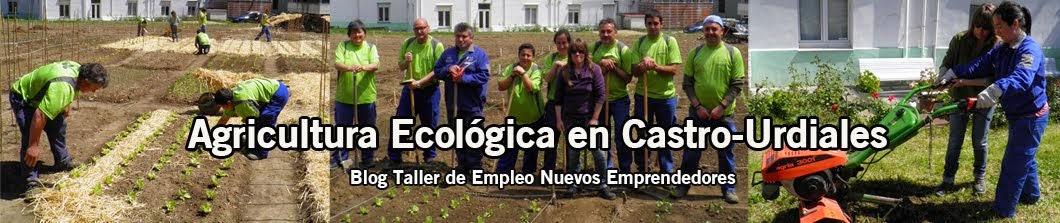 AGRICULTURA ECOLÓGICA CASTRO URDIALES Y OFERTAS SINGULARES DE EMPLEO 2014