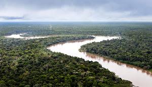 AMAZONIA  MARAVILLA NATURAL DEL MUNDO