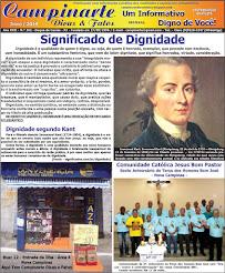 Campinarte Dicas e Fatos / Edição 262