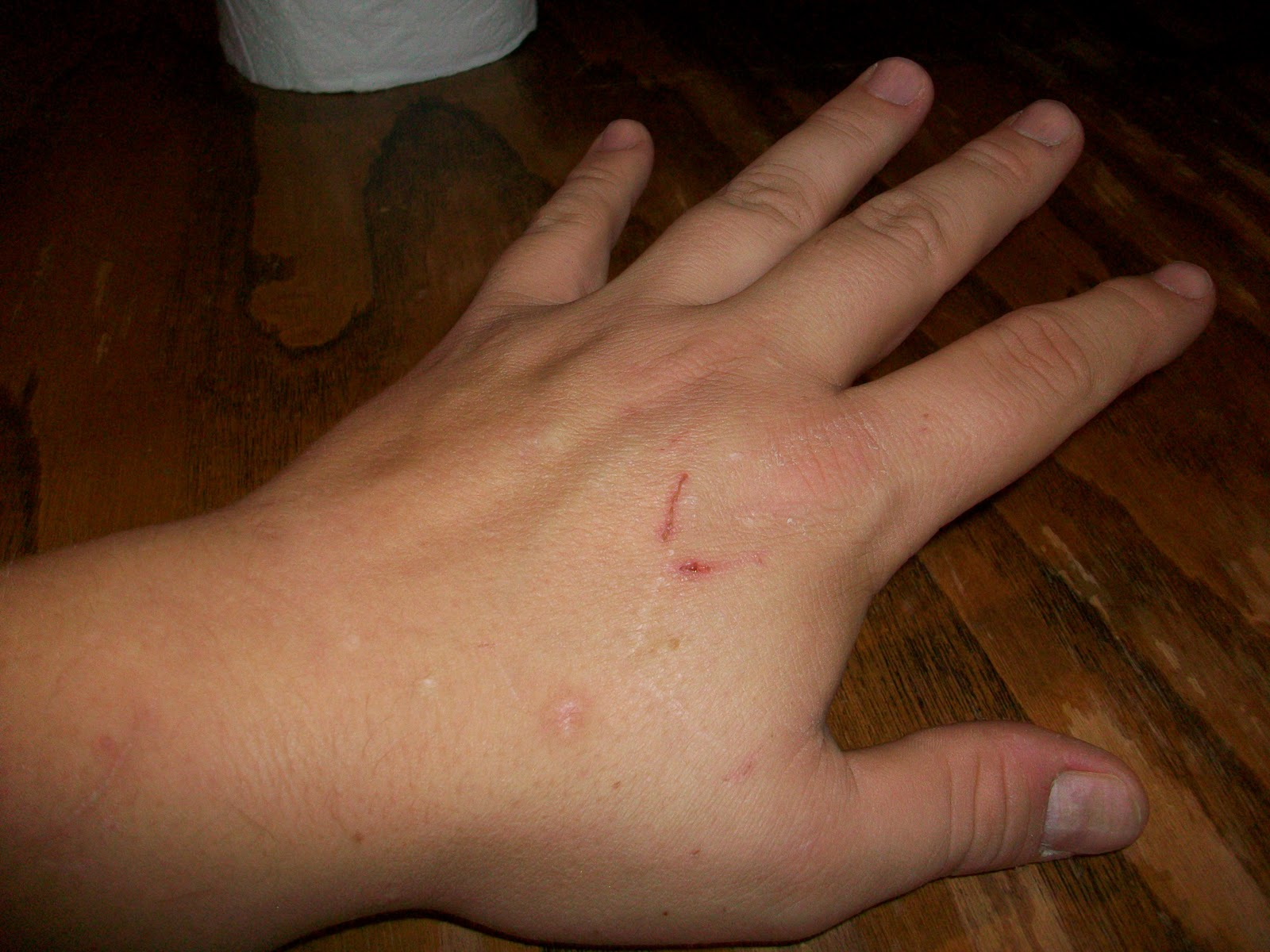 The scars and scratches are real and honestly earned from working on Halloween props.