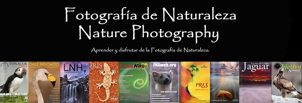 Fotografía de Naturaleza     Nature Photography