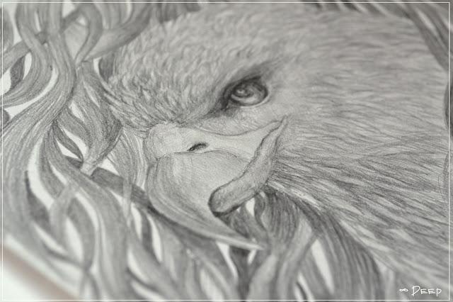 рисунок орел