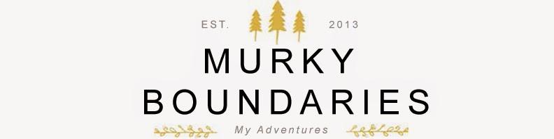 Murky Boundaries
