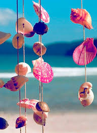 Sea shells on the sea shore