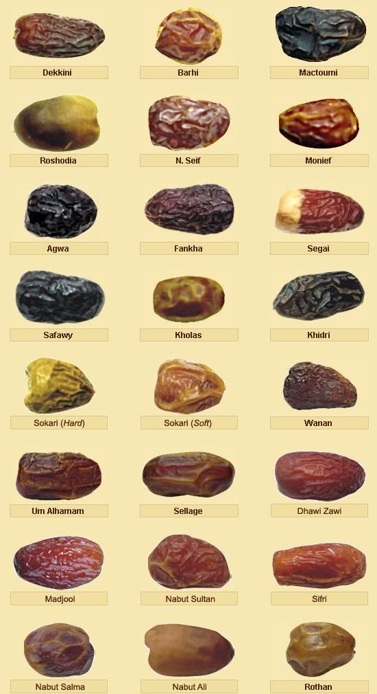 Jenis buah kurma