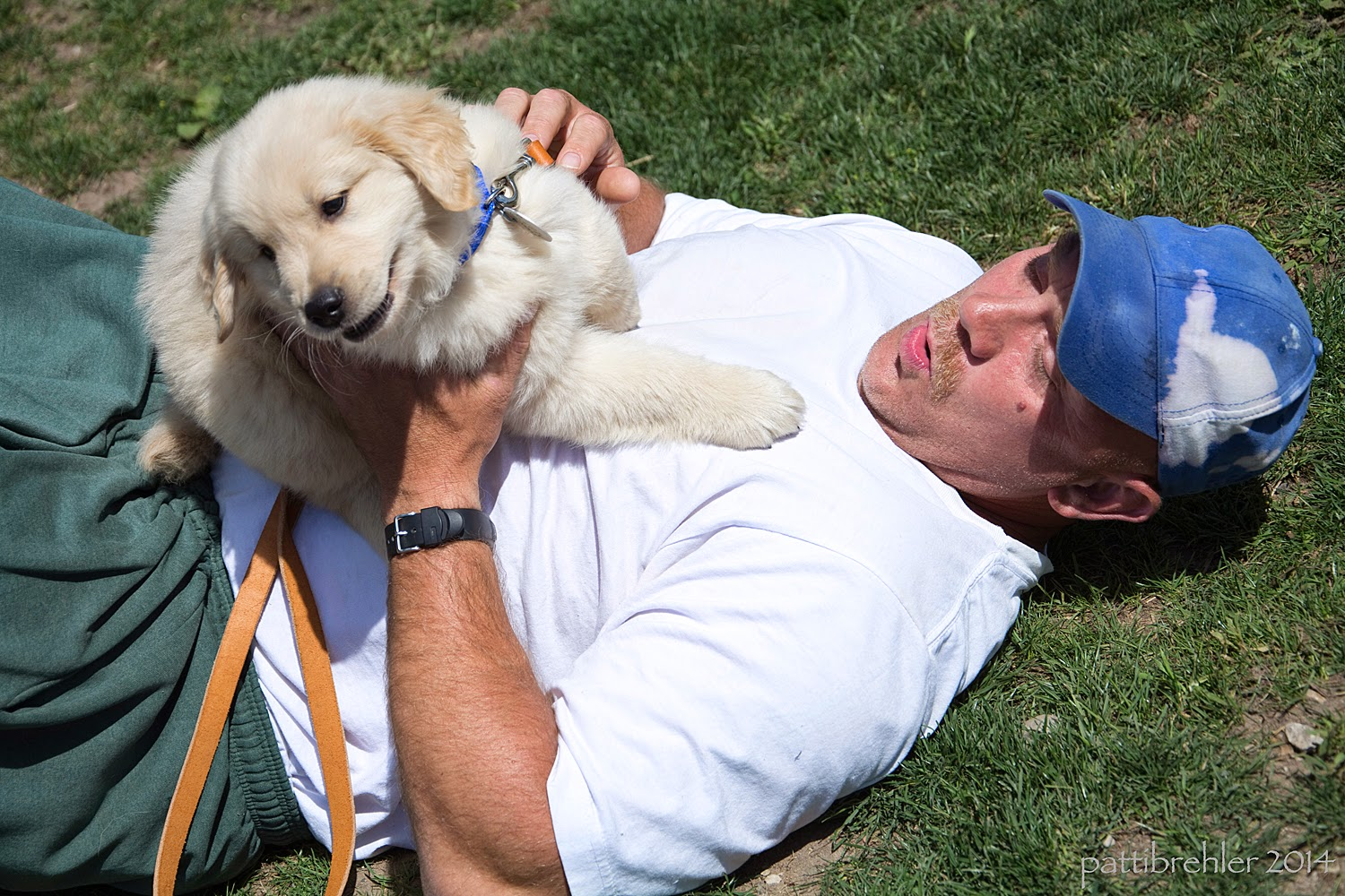 A man wearing green pants and a white t-shirt and blue baseball cap is lying on the grass on his back. He is holding a small golden retriever puppy on his chest with his hands, the puppy looks like it is squirming. The man has a surprised look on his face.