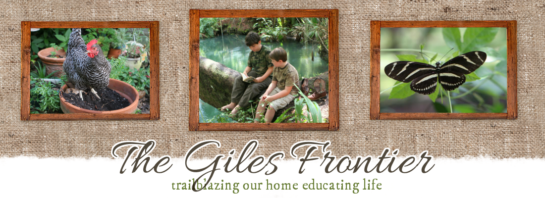 The Giles Frontier