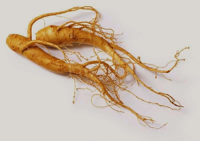 Efficacy of Ginseng for Health Body
