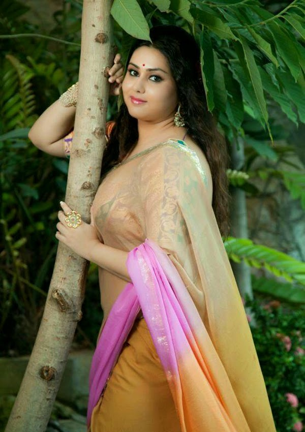 Actress Namitha Latest Saree Photos