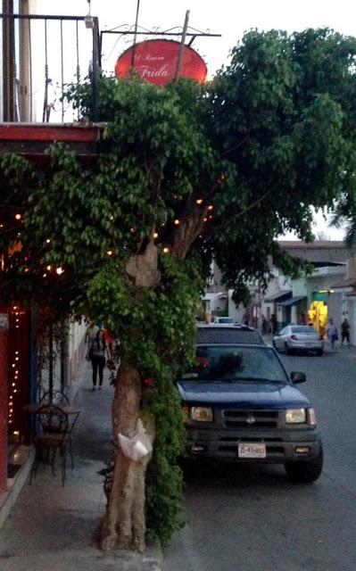 Jocotepec restaurant