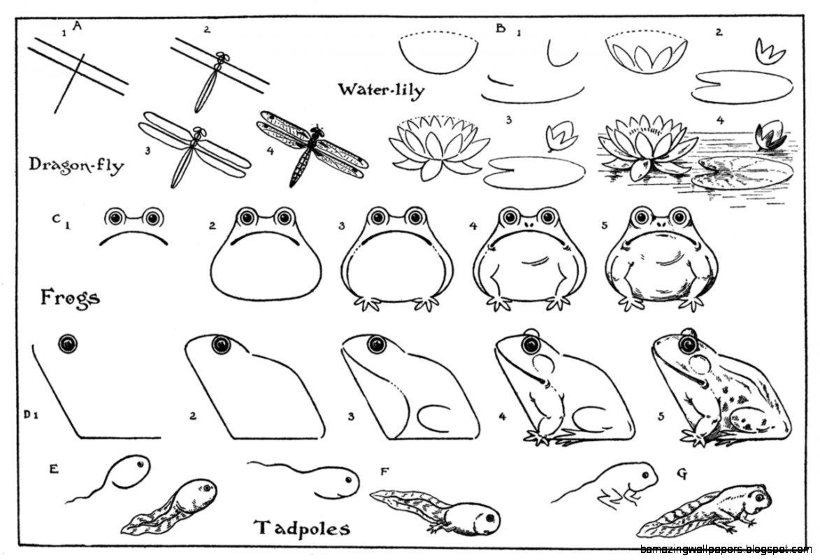 Artist in LA LA Land Illustration amp Design Drawing Cute Animals