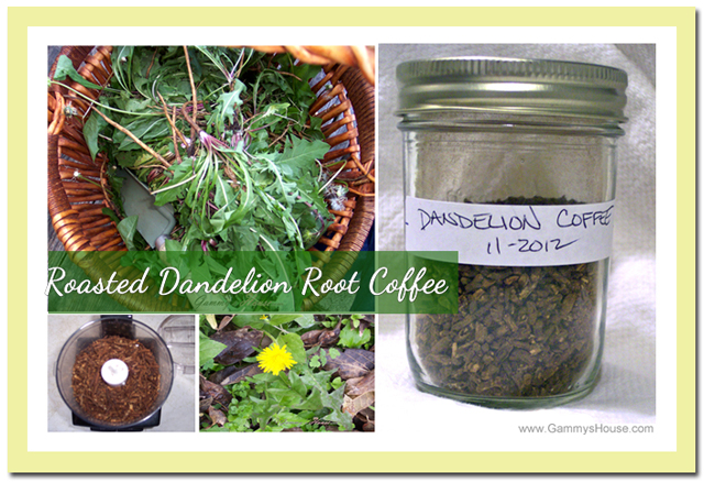 ... Off The Stove- Wild Edible Recipe Blog: Roasted Dandelion Root Coffee