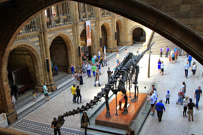 Central Hall with Diplodocus