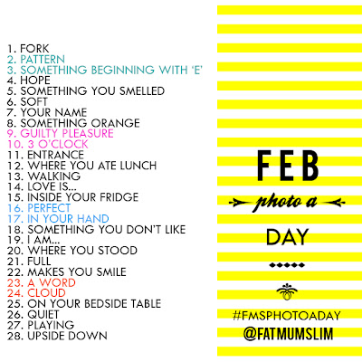Photo a day List February 2013