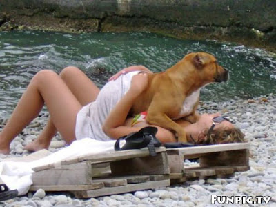 Hậu quả khôn lường vì sex với động vật