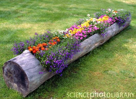 Summen af liv: Haveinspiration
