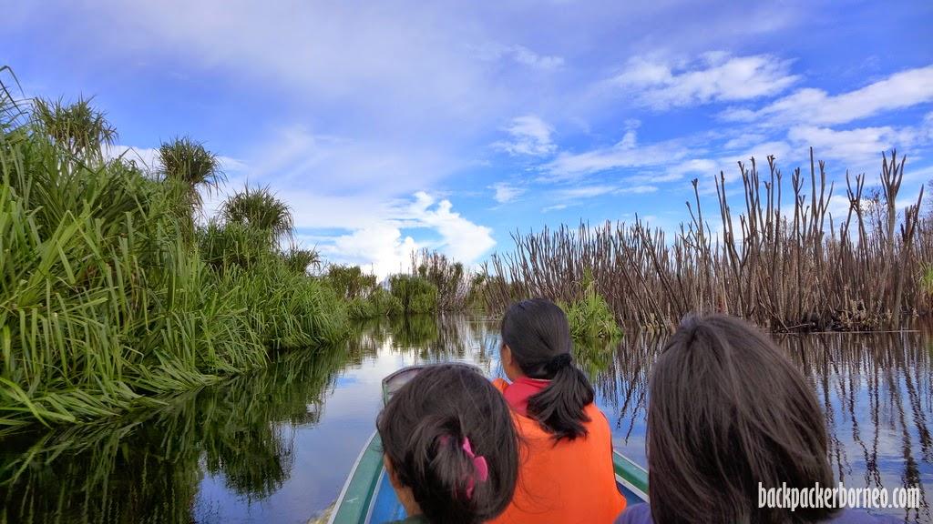 Taman Nasional Sebangau