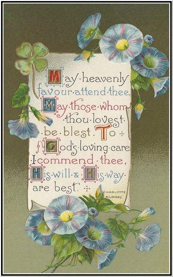 Little Birdie Blessings : April 2011