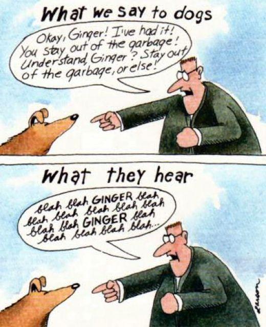 Gary Larson Cartoon Prints
