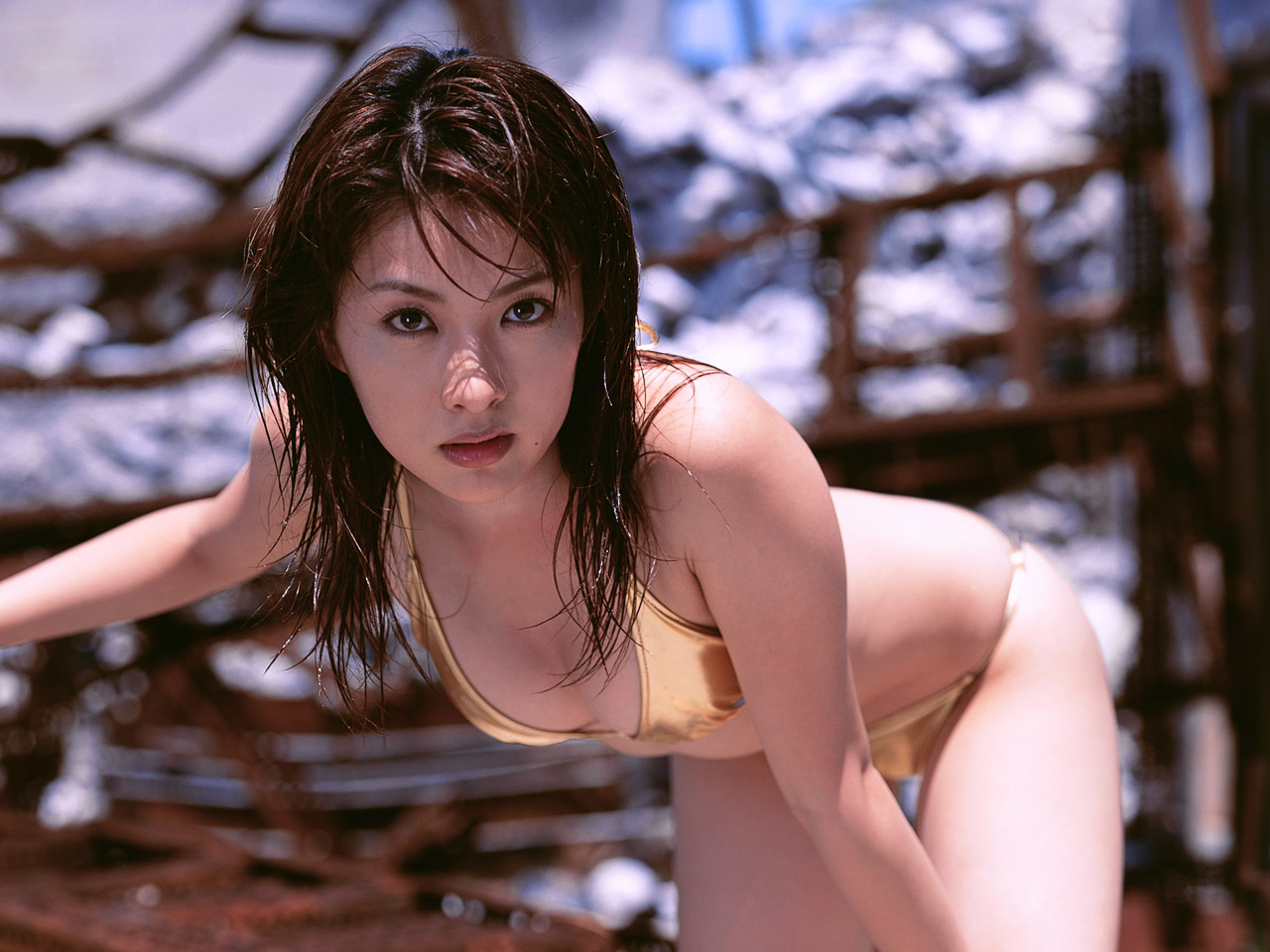 gadis cantik sexy bugil hot foto bugil bintang fim porno