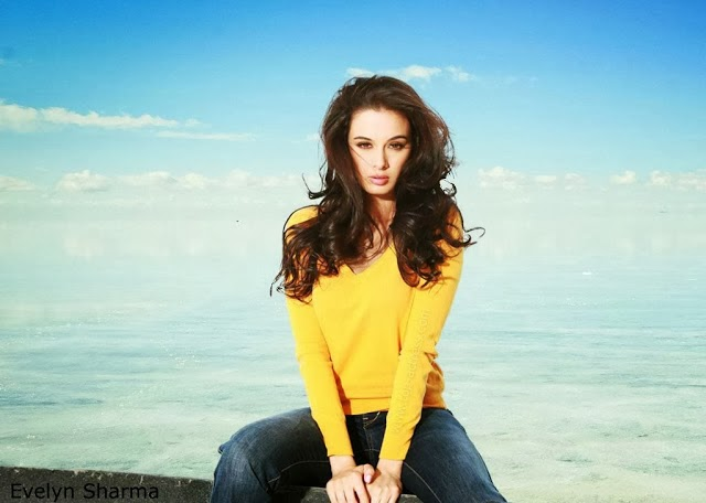 Evelyn+Sharma+Hd+Wallpapers+Free+Download017