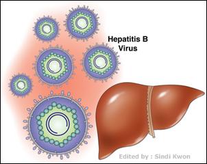 Obat Hepatitis B Tradisional yang Ampuh