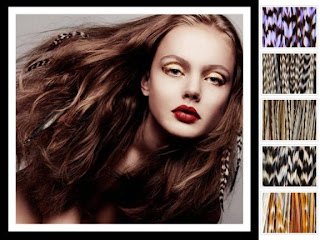 http://3.bp.blogspot.com/-_gQ20IBLvV0/TdX5rkB4fjI/AAAAAAAAAGs/bhY30ryr_P4/s1600/feather-hair-extensions-100394.jpg
